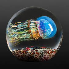 moon jellyfish side swimmer by richard satava art glass paperweight artful home