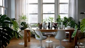 Decoration And Interior Design Plants And Greenery In Your Interior Design Youtube