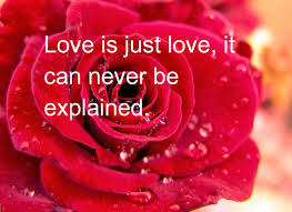 Cute Love Quotes For Your Boyfriend For Valentines Day Cute And