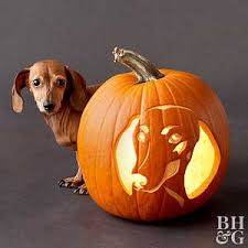 pumpkin carving patterns free free pumpkin stencils for halloween