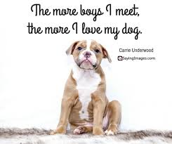 Quotes About Dogs Unique 48 Dog Quotes For People Who Love Dogs SayingImages