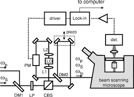 osa heterodyne coherent anti stokes raman scattering cars imaging 1 schematic of the heterodyne cars imaging microscope the output of a mach zehnder interferometer is coupled to a commercial laser scanning microscope
