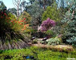 Small Picture Gardening Australia Downloads