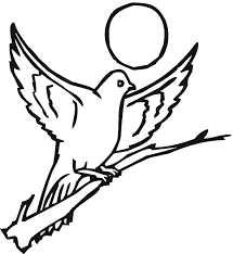 Small Picture Mo Willems Coloring Pages Elegant Dedication Page With Mo Willems