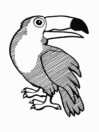 Small Picture Coloring Pages Toucan Animal Coloring Pages Toucan Bird Coloring