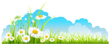 Free Spring Spring Wallpaper Clipart