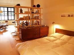 High Quality Studio Apartment, Ikea Book Shelf / Room Divider, Nabuzz