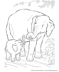 Small Picture Wild Animal Coloring Pages Baby Elephant Coloring Page and Kids