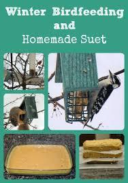 winter birdfeeding and homemade suet
