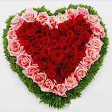 70 red pink roses heart shape designer arrangement j k florist