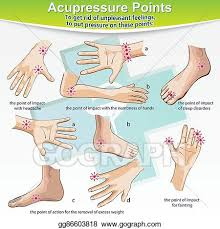 Vector Illustration Massage Therapy Acupressure Points