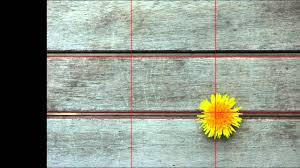 rule of thirds photography. Rule Of Thirds Photography