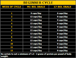 Steroid Cycle Chart Cycle Chart Steroids Cycles Cycling For Beginners Cycling