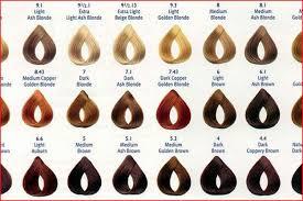 Matrix Hair Color Book New Chart Valid Evolution Catalog Of