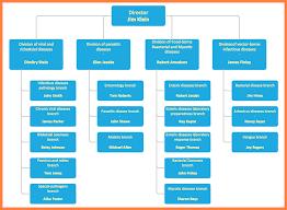 Company Organizational Chart Guatemalago
