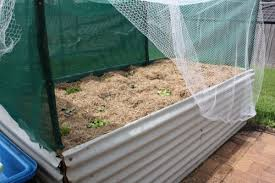 diy raised garden bed our family projects