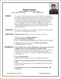 Part 85 Sample Functional Resume Executive Skills