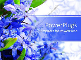 Spring Powerpoint Powerpoint Template Beautiful Spring Flowers Placed On A