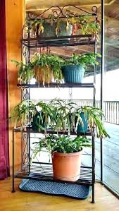 iron plant stand outdoor wrought iron stands for hanging plants wrought iron plant stands outdoor iron