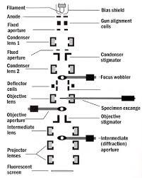 Tem Microscope Transmission Electron Microscopy Central Microscopy Research Facility