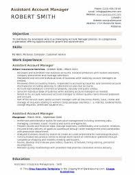 81 Accounts Manager Resume Assistant Account Manager