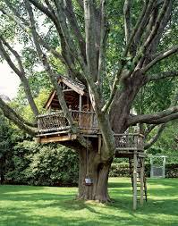 14 Best Tree House Images On Pinterest  Castle Children And CottageTreehouses For Children
