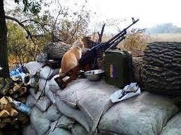 Одного українського воїна поранено з початку доби. Зафіксовано 8 обстрілів позицій ЗСУ, - штаб ООС - Цензор.НЕТ 2480