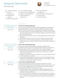 Free Resume Templates Professional Curriculum Vitae Cv