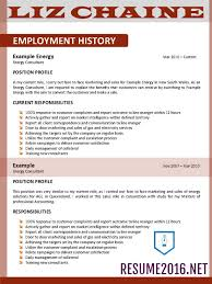 Resume Templates My Professional Resume Nice My Perfect Resume