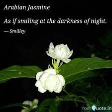 Jasmine Flower Quotes Bijlotti