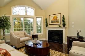 Light Color Combinations For Living Room Living Room Fancy Small Living Room Paint Colors With Modern Light