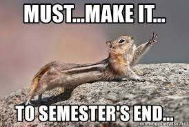 Image result for end of the semester memes