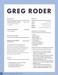 Cv Examples Best Resume Templates Design For Job Seeker And Career