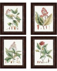 >amazing deal on paragon decor crimson botanical framed wall art  paragon decor crimson botanical framed wall art set of 4