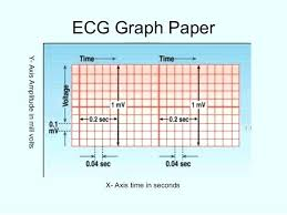 X Axis And Y Axis Graph Paper X Axis Y Axis Graph Paper