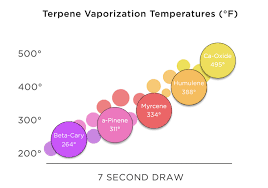 Terpene Temperature Chart The Secret To Unlocking Full Cannabis Flavors And Effects