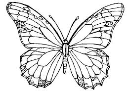 Butterfly Outline Coloring Page Wing Printable Pattern Templates