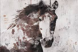 fascinating horse canvas wall art simple design decor gorgeous temple webster sku darg2043 is also sometimes