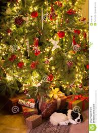 Royalty-Free Stock Photo. Download Puppy Under The Christmas Tree ...