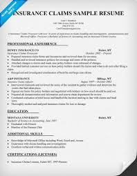 Insurance Claims Representative Sample Resume Interesting Insurance Adjuster Resume Template