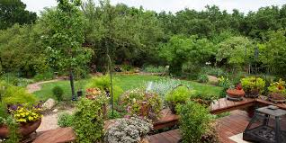 right now is the best time to plant a garden in san antonio find out