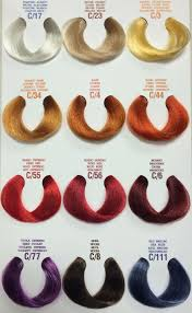 Five Questions To Ask At Elgon Hair Color Chart Elgon Hair