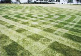 Mowing Patterns Unique Living Sculpture Website Template