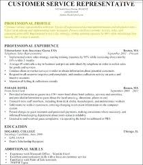 What To Put In Professional Profile On Resume Company Profile Resume Template Example Of For Sample Professional
