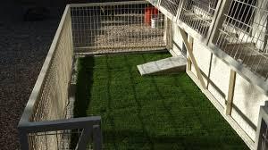 grass floor dog kennels installed