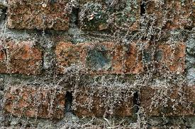 old brick dry wall vintage texture