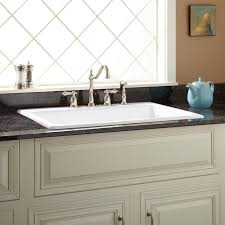 drop in kitchen sinks white