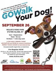 the anthony demartino foundation 2nd annual skechers go walk your dog 5k