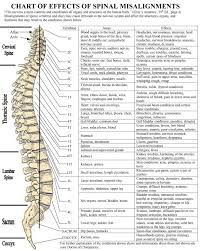 Merrick Chart Spine 2019