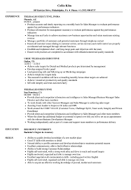 Telesales Executive Resume Samples Velvet Jobs